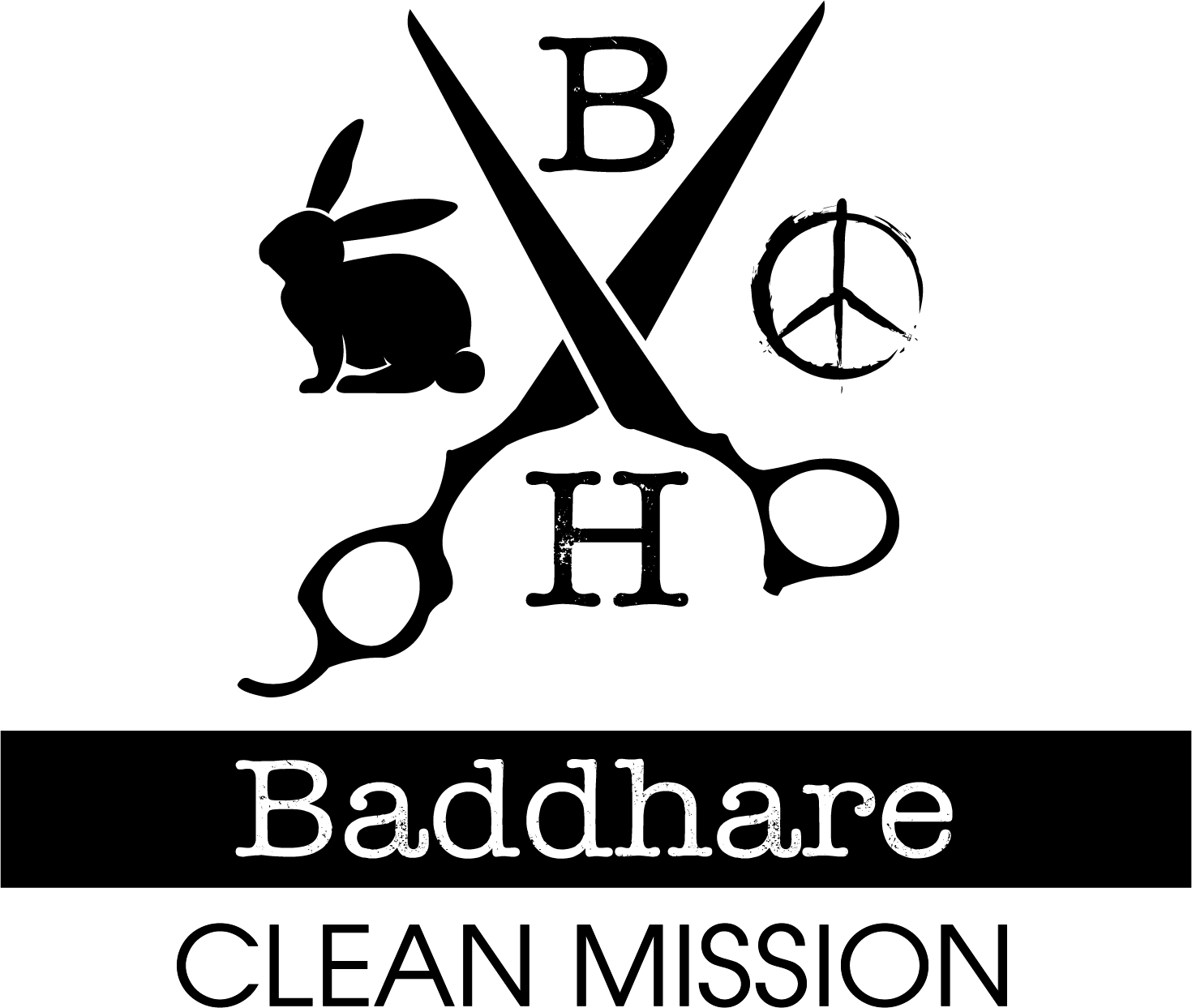 Baddhare Clean Mission